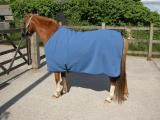 Thermatex Pony Knitted Summer Rug
